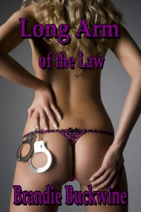 Long Arm of the Law, by Brandie Buckwine